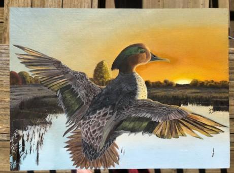 Ian's duck