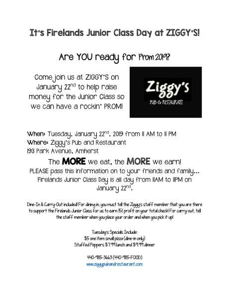 ziggys fundraiser poster 1 2019