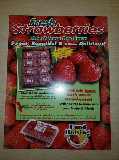 Strawberries FFA 2019