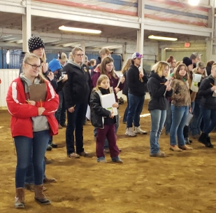 FES at horse judging 2019 1