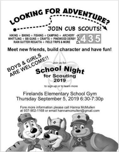 Cub Scouts 2019